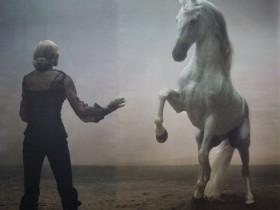 Мадонна снизилась с кони (ФОТО)