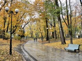 Из Закарпатской области сделают ландшафтный парк