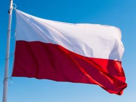 Выборы в Польше