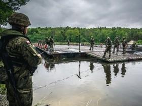 военные Чехии