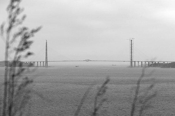 Медведев приоткрыл перемещение на полуостров Русский