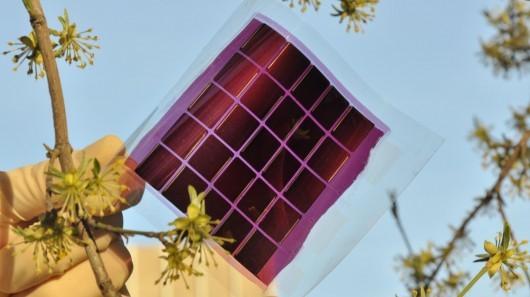 Учёные придумали эластичные естественные солнечные панели