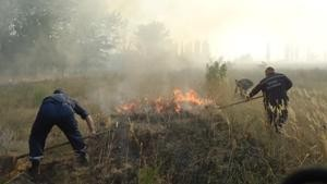 В Донецком ожоговом центре будут исцелять лесников из Херсона