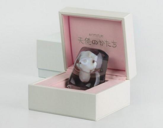 В Японии реализуют 3D-модели зародышей