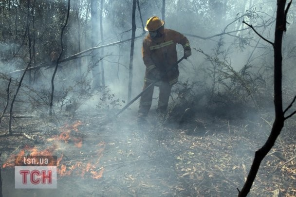 Австралийские пожарные стараются уберечь Зеленый материк