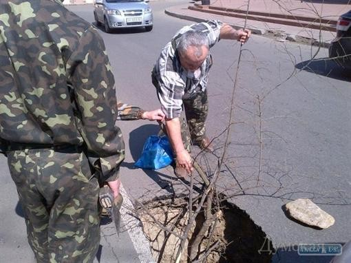В центре Одессы участок автодорожного полотна ушел под землю