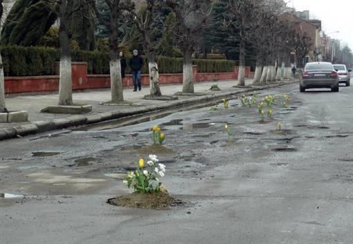 В Коломые люди посадили цветы в ямах на автодорогах