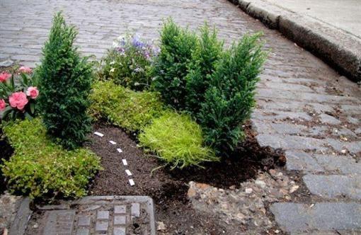 В киевских ямах на автодорогах посадят цветы