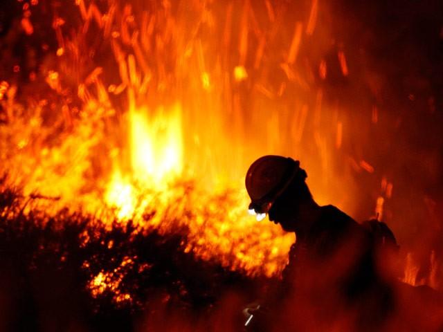 В Калифорнии неистовствуют лесные пожары