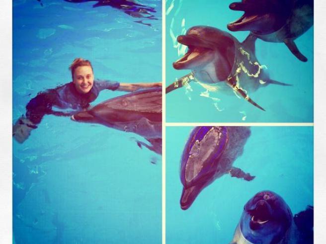 Ева Бушмина поплавала с киевскими дельфинами (фото)