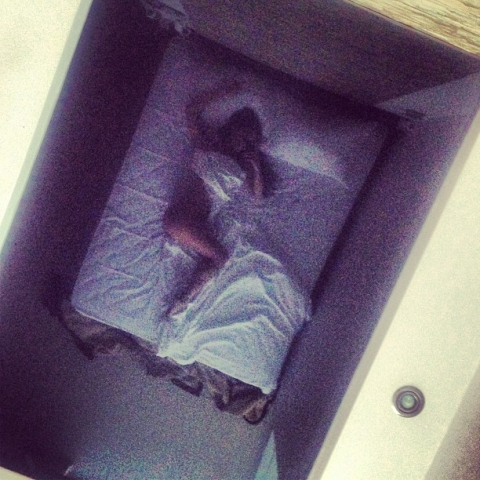 Юлия Седокова продемонстрировала себя голую в кровати (фото)