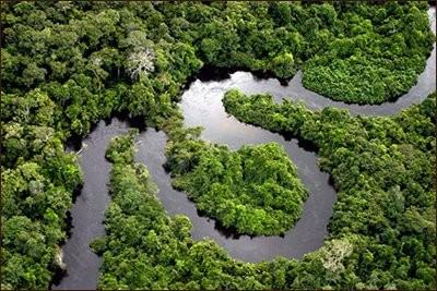 Землю в дальнейшем ждет удушье от СО2