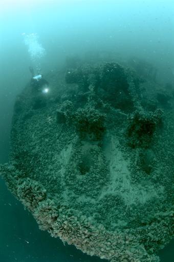 В Ялте из троллейбуса и катера сделают синтетические рифы