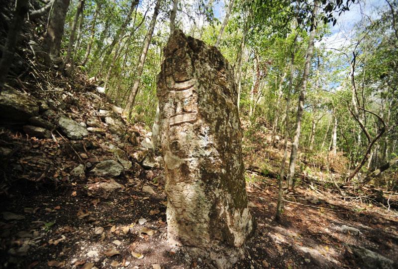 В мексиканских тропических зарослях обнаружили развалины потяренного города Чироки