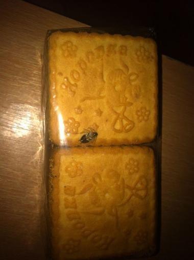 Одессит приобрел печенье с тараканом