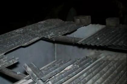 С крыши снизилась кормилица и усмирила дремлющего бразильца