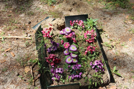 На Житомирщине вандалы ели крести с могил на металлолом