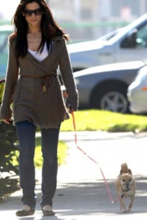 Сандра Баллок беспокоится о собаках-инвалидах (фото)