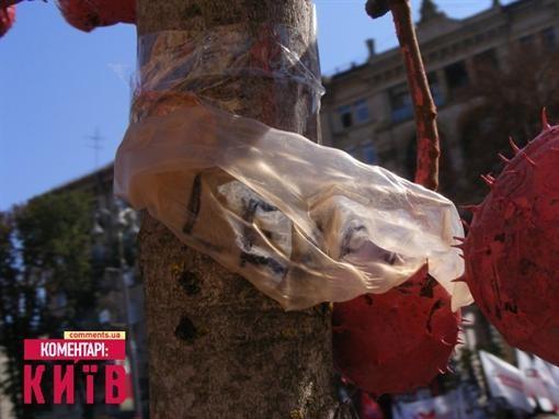 Каштан около Киевсовета увесили презервативами и плодами