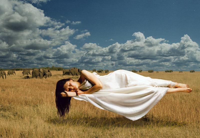 Двадцать поразительных прецедентов о сновидениях