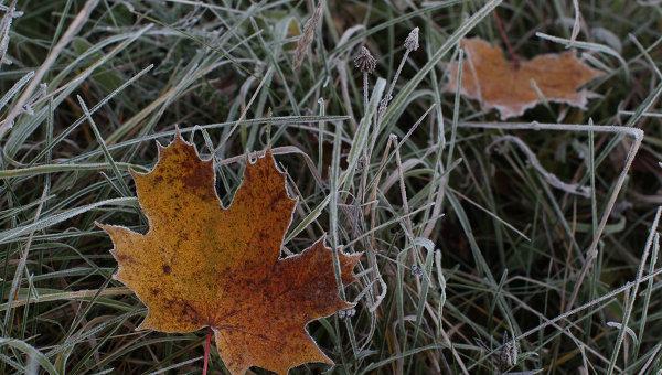 В Украине на воскресенье прогнозируют заморозки