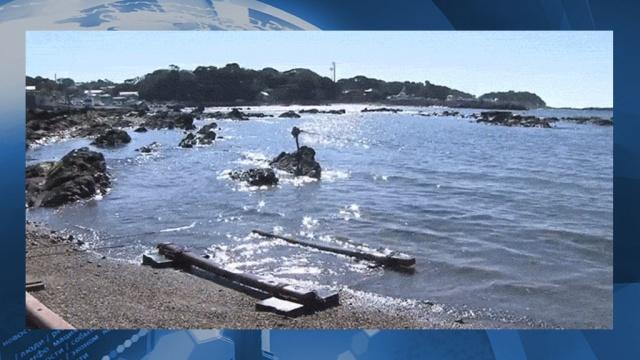 К краям Японии пригвоздило 120 кг кокаина в ранцах