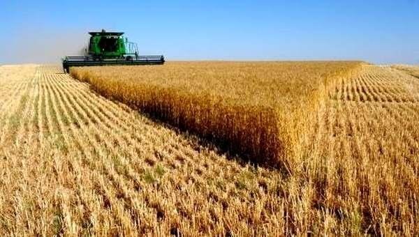 «Аграрная политика Украины»: Нас ожидает 12 млрд. незанятых