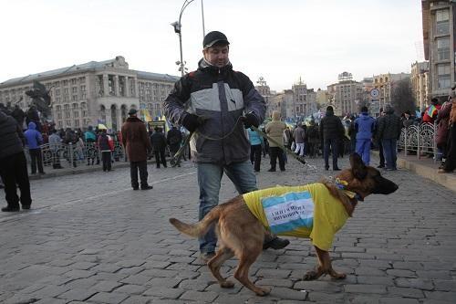 На Евромайдане возникли собаки-революционеры