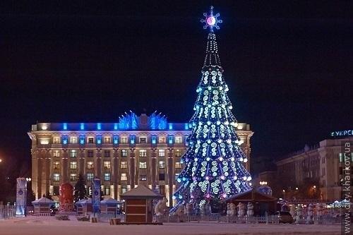 Определены наиболее прекрасные елки Украины (ФОТО)