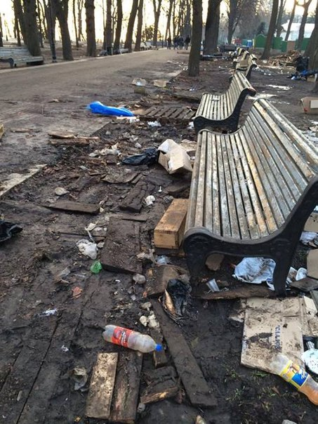 Экологов шокировал Мариинский парк после митингов (ФОТО)