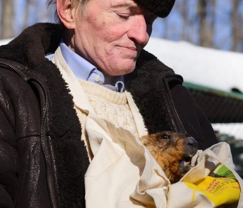 День сурка: Харьковский Тимка предрек долгую зиму