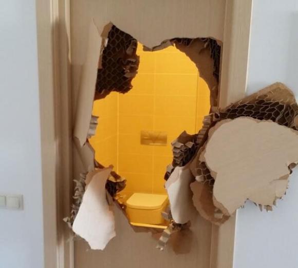 Бобслеист, выломавший дверь в душе, застрял в лифте (ФОТО)