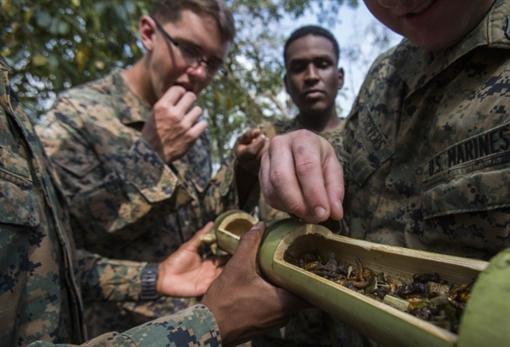 В Тайланде спецназовцы едят скорпионов и пьют кровь кобр