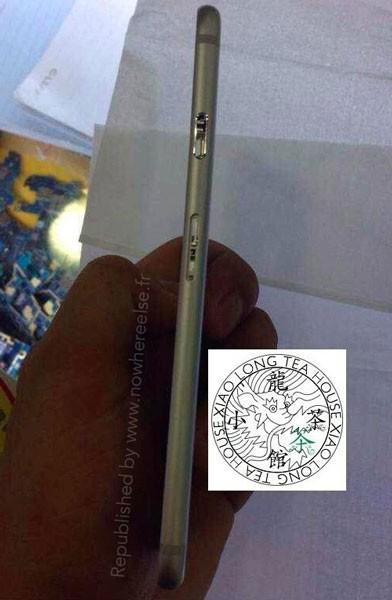ФОТО: Фотографии задней панели нового Айфон 6