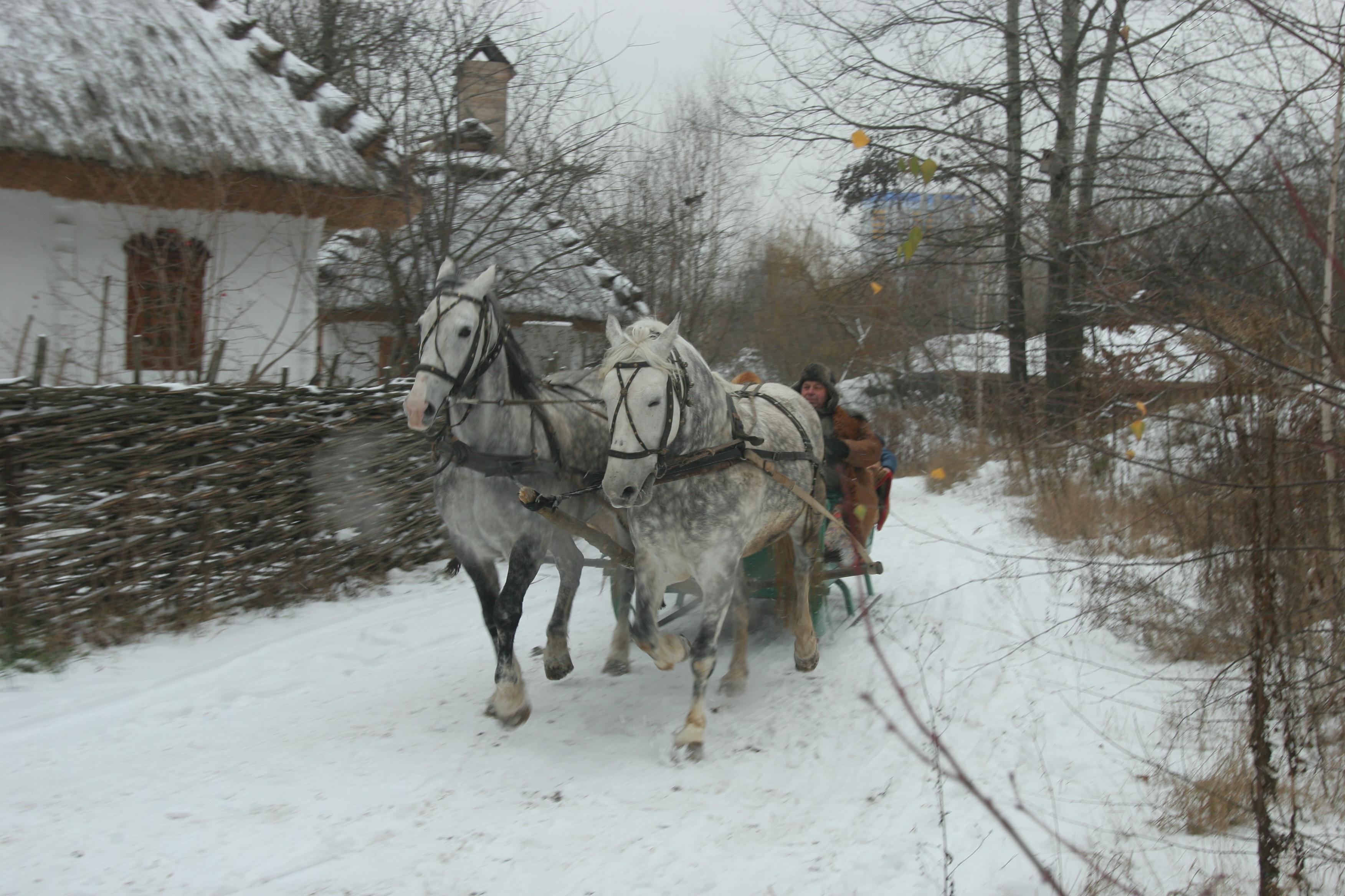Как в Киеве встретить Рождество?