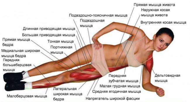 Самое лучшее и эффективное упражнение на все времена
