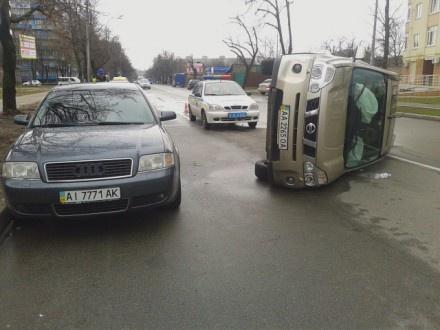 В Киеве из-за кота столкнулись машины (ФОТО)