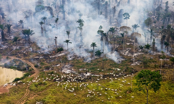 Трагические последствия роста населения на планете (ФОТО)