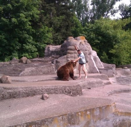 ФОТО: Пьяный мужчина залез в вольер к медведице и избил ее