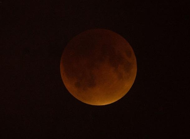 """""""Гигантская кровавая луна"""": лучшие фото редкого затмения"""