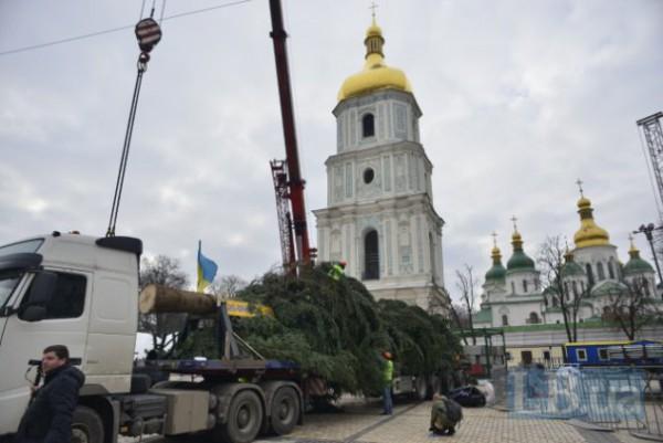 Основную рождественскую елку страны доставили в Киев (ФОТО)