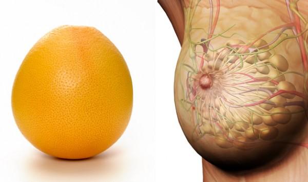 Еда полезна для той части тела, на которую похожа (фото)