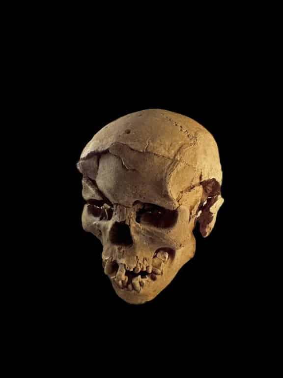 Обнаружены следы самой древней битвы в истории мира (ФОТО)