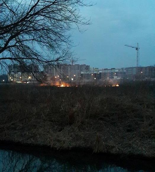 Под Киевом вновь пылают торфяники