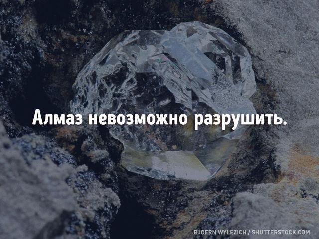 Вымыслы о Земле, в которые мы веруем еще со школы