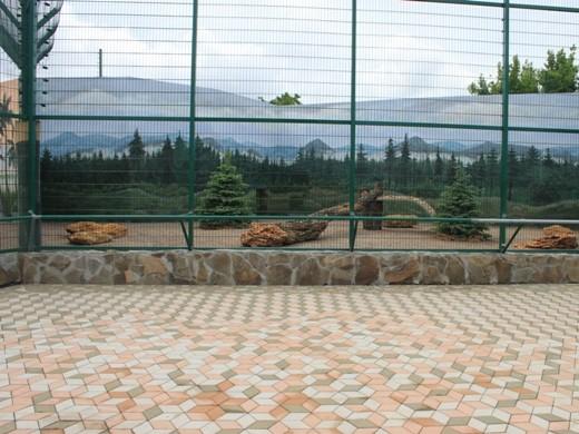 Фото: В Одессе открывается биопарк со львами и жирафами