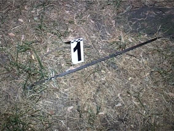 В Киеве тесть зарезал грядущего зятя шампуром (ФОТО, ВИДЕО)